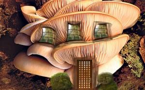 Oyster mushroom...ADB9AC Oyster mushroom